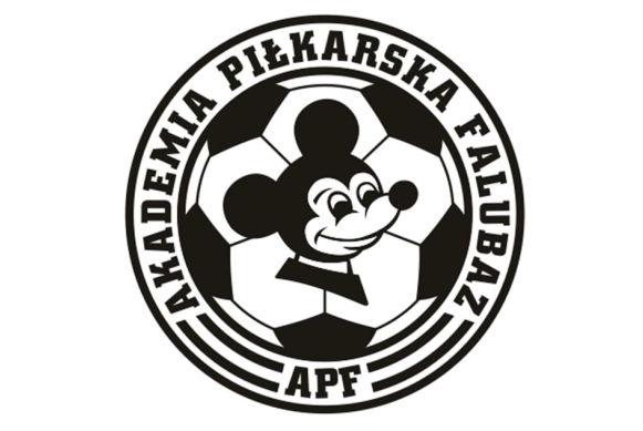 Ilustracja do informacji: FALUBAZ CUP 2020 W DRZONKOWIE